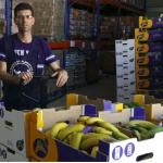Plátanos de Canarias y Banco de Alimentos