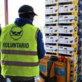 Platano de Canarias Bancos de Alimentos