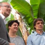 Plátano de Canarias, alimento oficial de la décima edición de Transvulcania